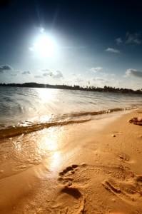 Barefoot Beach Florida Real Estate Report