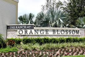 Orange Blossom Ranch