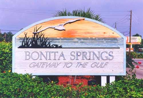 bonita springs real estate, bonita springs realtor, bonita springs real estate agent