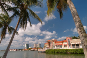 southwest florida real estate