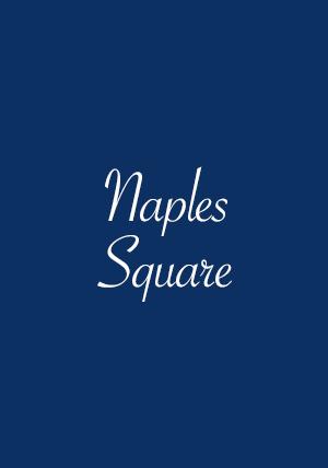 Naples Square Properties