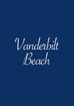 Vanderbilt Beach Conners Homes for Sale Naples FL
