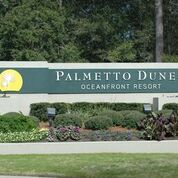 Palmetto Dunes Market Reports