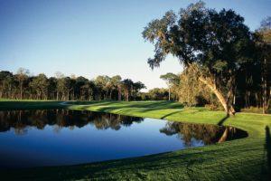 HH_Golf_Tree_Cove2
