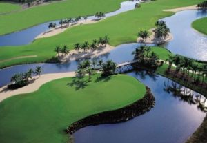 Grey Oaks Golf in Naples
