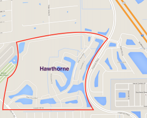 Homes for sale in the Hawthorne Community Bonita Springs Real Estate