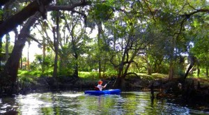 kayaking Estero River near Stoneybrook