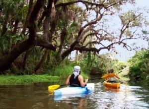 estero river canoe