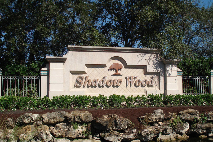 Shadow Wood At The Brooks