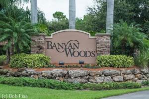 Banyan Woods