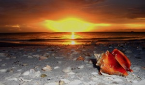 Beautiful Gulf beaches are only ten minutes from Seaglass in Bonita Bay.