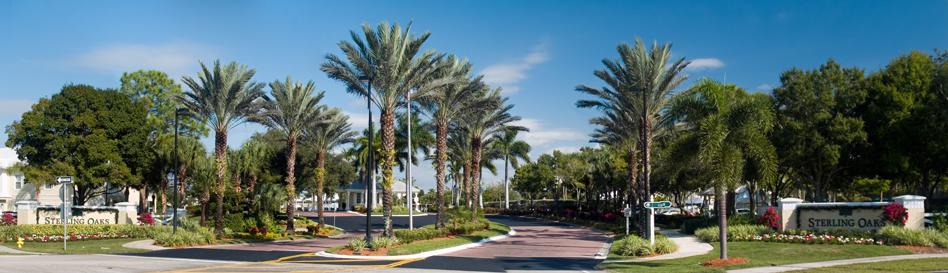 Sterling Oaks Naples homes for sale real estate