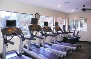 The Forest fitness center