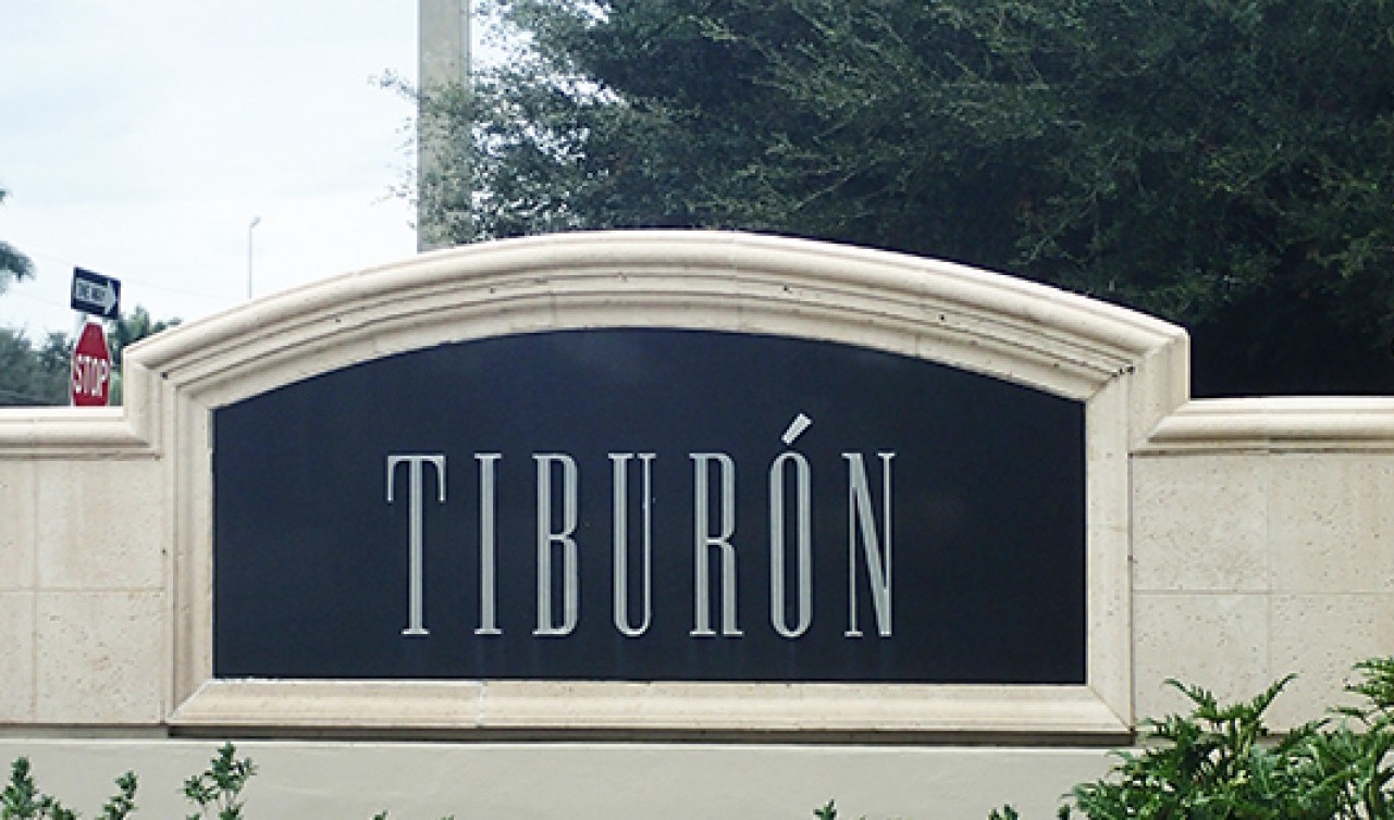 Homes for sale in Tiburon Naples Florida Real Estate