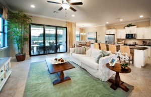 Whispering Palms Home features